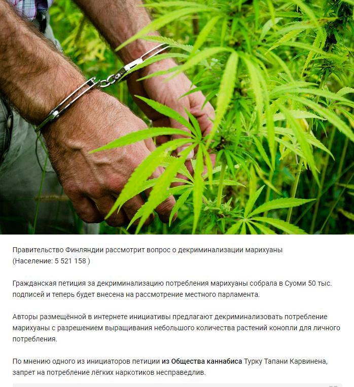 Когда в россии марихуану путин легализовать купить новосибирске марихуану в