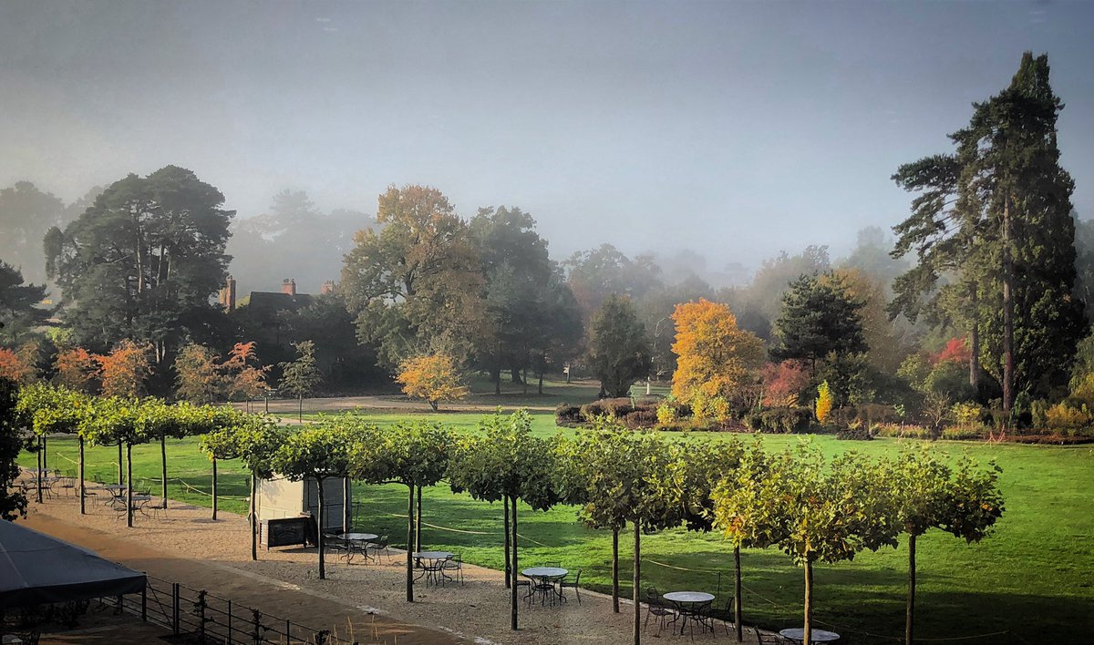 Sunshine breaking through the mist @RHSWisley. What a magical morning! 🍂✨
