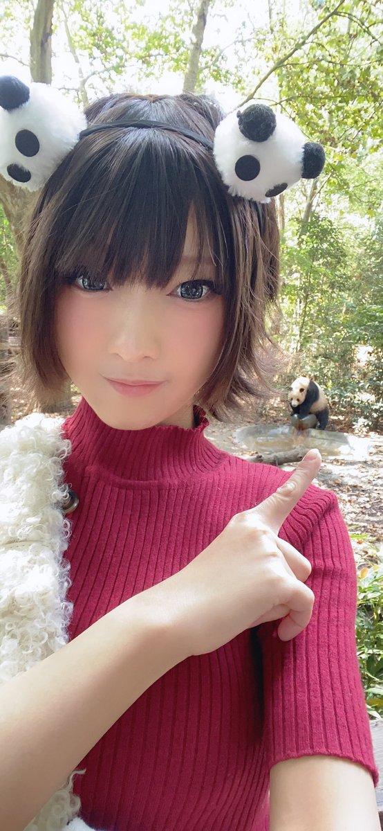 中国のパンダに会いに行ってきたよ🐼レッサーパンダも居て可愛かった(*´꒳`*)