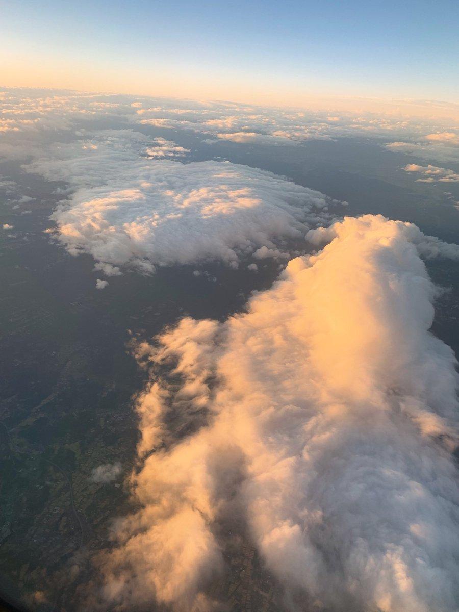 先日、初めて車椅子で飛行機に乗ったときのことをブログにアップしました!機内へは専用の車椅子で移動し、席に移乗✈️✨とても丁寧に対応してくださり感謝感激でした!!
