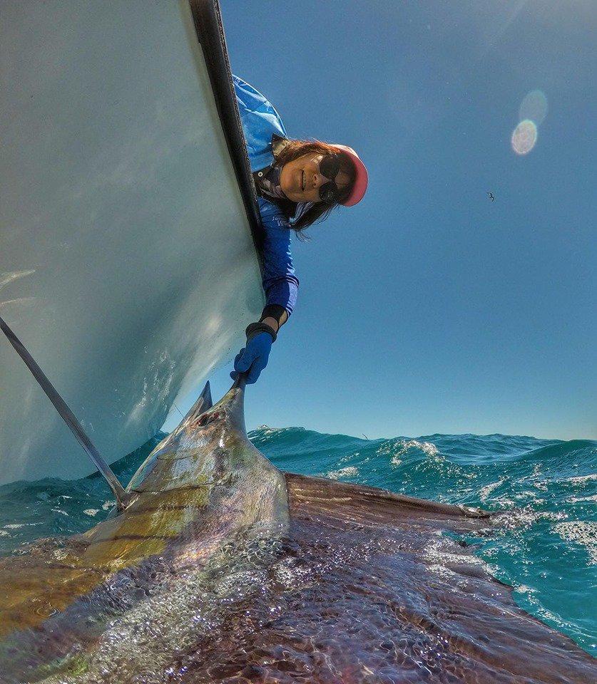 Exmouth, Aus - Peak Sportfishing went 5-9 on Sailfish. #ExmouthFishing #Sailfish