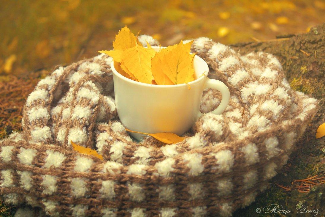 доброе утро с осенним морозом картинки пока
