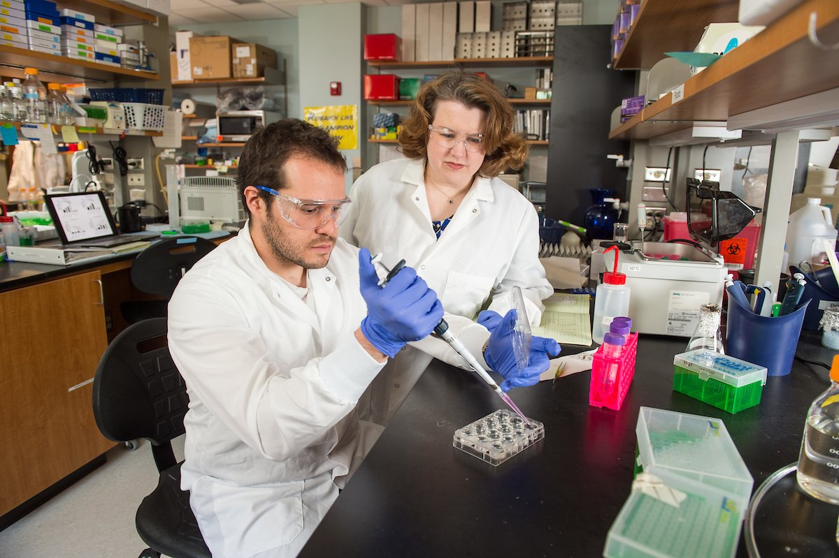Researchers discover critical process for how breast cancer spreads in bones go.nd.edu/29856d