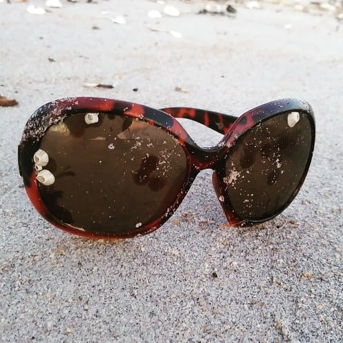 What's the latest trend in ocean-meets-fashion? Barnacle embellished sunglasses  Coming to a beach near you   #sunglasses #lostatsea #barnacles #beachcomber #stunnashades #tortiseshell #oceanchic #shoreline #litter #trashtag #beachcleanuppic.twitter.com/uKA1lqjdYJ
