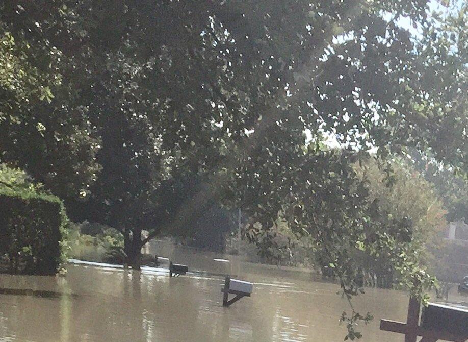 @NightlyPolitics Hurricane Harvey. My sister lost her house. Bachman can take a swim