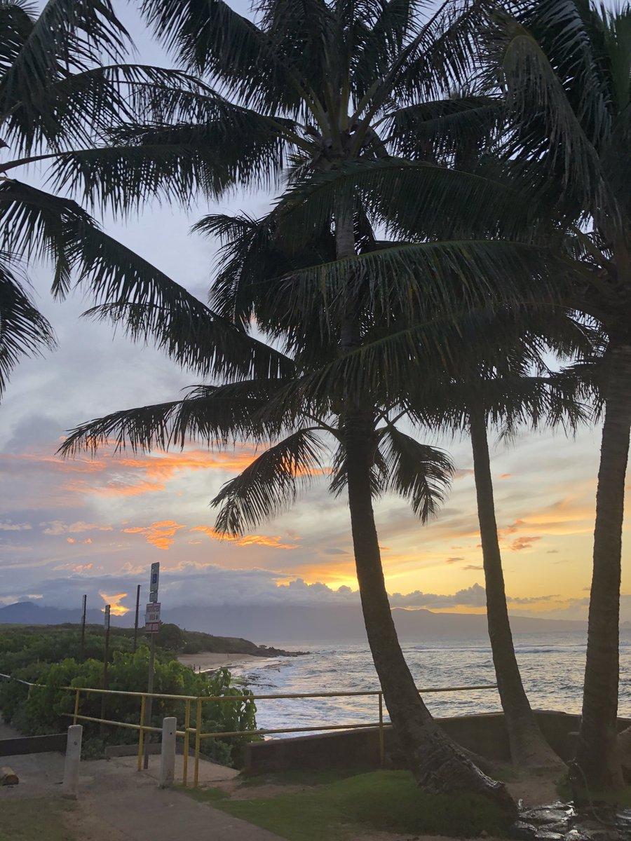 test Twitter Media - Cooling at sunset on the North Shore. #cmweather #Maui #surf #sunset #Hookipa #MagicalMaui #Mauinokaoi https://t.co/EEBif4lxCc