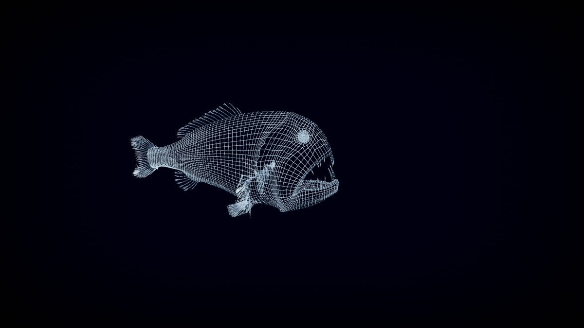 The use of 3d technology enables us to highlight certain marine ecosystems!We create memories, we make our visitors live an unforgettable experience with the educators. @Oceanopolis_ présente expériences et résultats à la conférence #EUAC #ClimateChange #deepsea @virtualysBrest