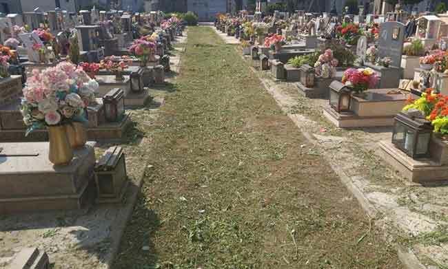 test Twitter Media - #PoliticaLavoro #Castellammare - Lavori ai cimiteri in occasione del 2 novembre, assegnata la gara con un ribasso del 43% LEGGI LA NEWS: https://t.co/yjIXpREBXB https://t.co/9XBWtis2mT