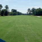 Image for the Tweet beginning: A beautiful Celebration® Bermudagrass fairway