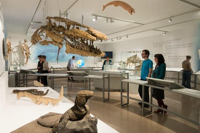 test Twitter Media - Online tool vertelt welk museum bij je past https://t.co/kbUnz1QUkd https://t.co/SbOED9wy4f