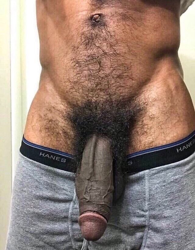 Hairy tattooed black stallion jerks his huge thick cock