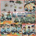 Image for the Tweet beginning: Los de 2º de infantil