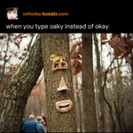 Image for the Tweet beginning: are you oaky?