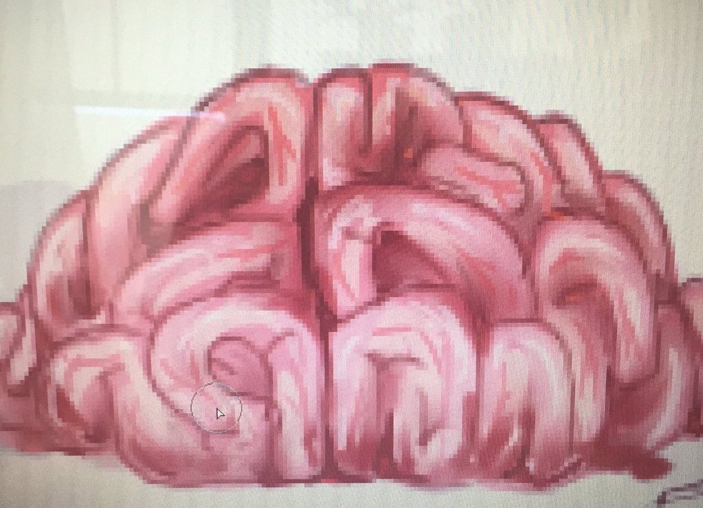 頭が痛いので昔に描いた美味しそうな脳ミソ投下(っ'-')╮ =͟͟͞͞ブォン