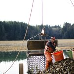 Image for the Tweet beginning: Federal shellfish permit doesn't protect