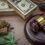 Image for the Tweet beginning: Why The Cannabis Industry Is