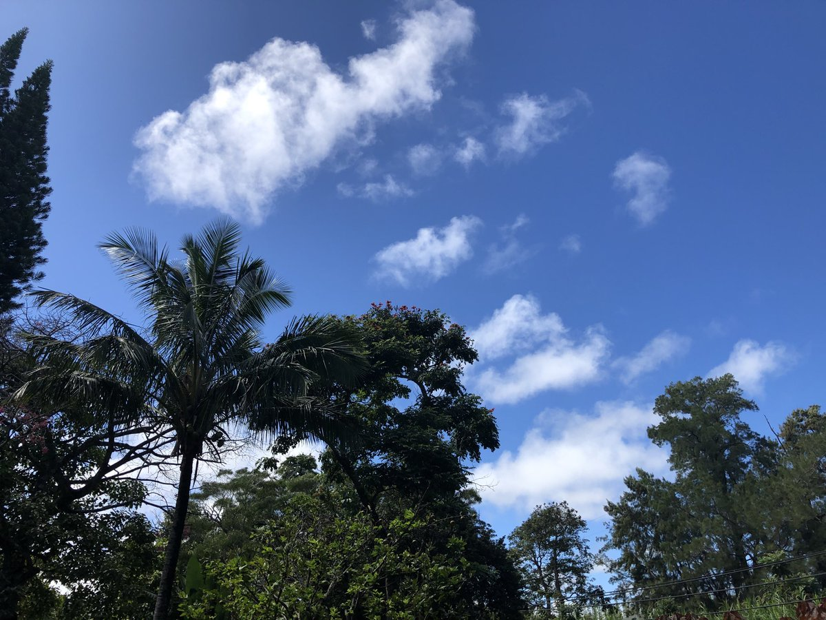 test Twitter Media - Warm and breezy in Haiku. #cmweather #Maui #Mauinokaoi https://t.co/LgcJMQyShG