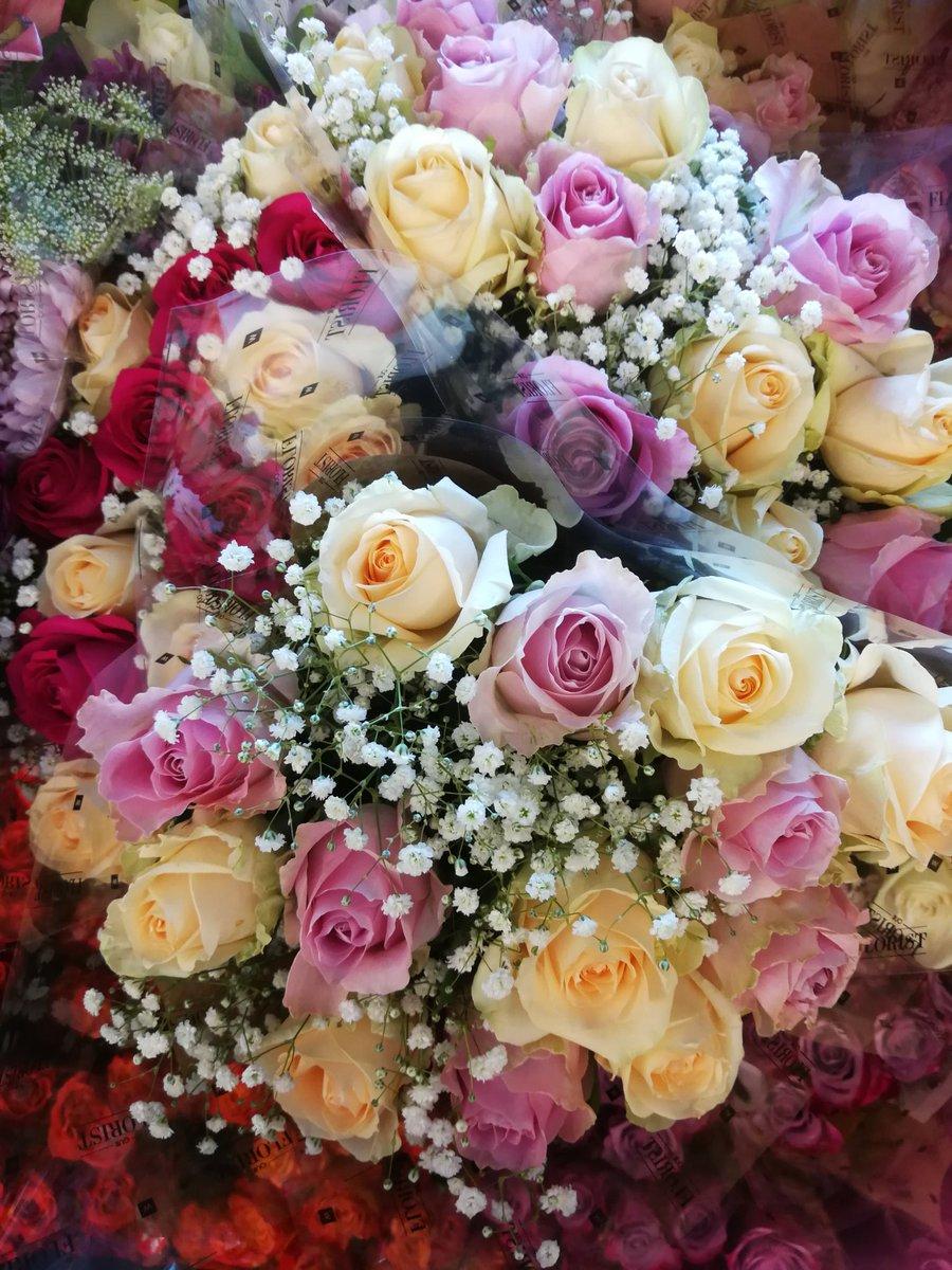 Abundance of colors in roses  #CultureTrav