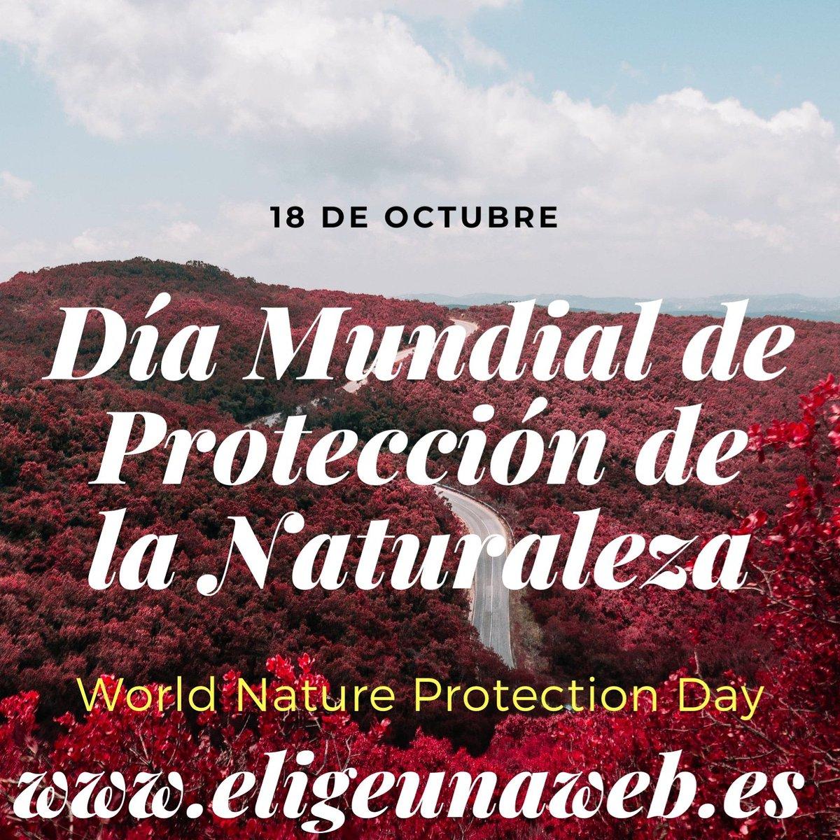 18 de octubre. Día Mundial de Protección de la Naturaleza. World Nature Protection Day. #hoy  #todayworld  #today  #hoyeseldía  #felizviernes  #happyfriday  #natura  #natural  #naturaleza  #proteccionnaturaleza  #natureworld  #nature  #natureprotection  #ProtectNature
