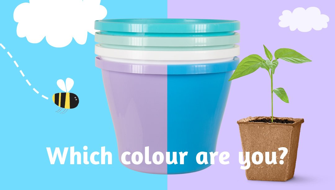 Keep your Discovery Garden seedlings growing with REKO Little Planters by @HomeLeisureAU – available in @woolworths while stocks last! 🌿   Which colour are you? 🔵🟣   #DiscoveryGarden #plants #herbs #garden #HomeLeisureAU #vegetables #colour #fun #Australia #kids #gardeninspo