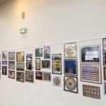 Image for the Tweet beginning: Venez découvrir la belle exposition