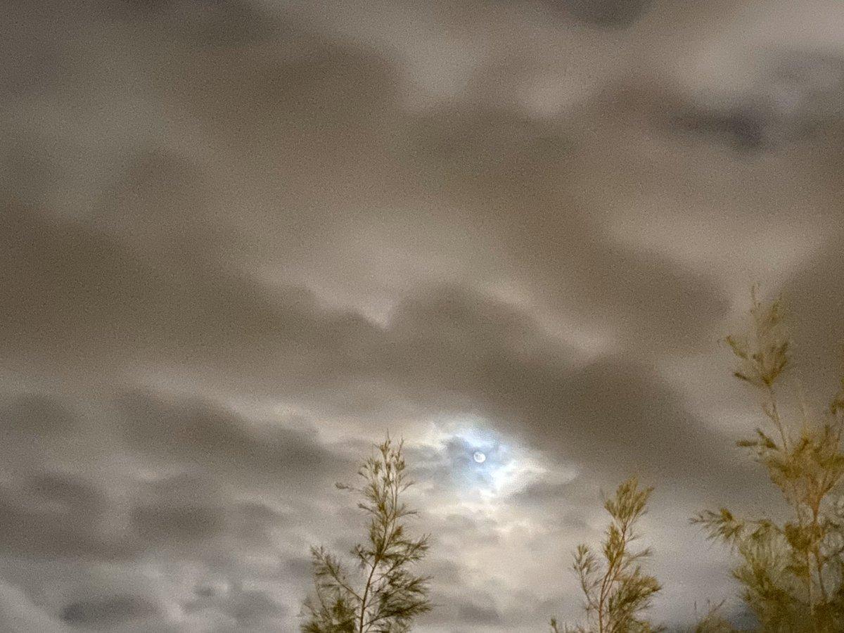 ずっと雨が降っていた。外は肌寒い。止んでくれないかなぁと、空を見上げたら…ほんの一瞬。月の周りだけ雲が開けた!!こんなことあるんだなぁ(o̴̶̷᷄·̫o̴̶̷̥᷅)今週も頑張った。楽しかった。心から言える。神様がくれたご褒美を胸に。おやすみなさい☆#iPhone撮影#PROの空