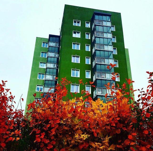 Autumn colours at Etterstad 🍂🍁😊 #oslo #visitoslo Photo: @toughnilsen ift.tt/32yeBIg