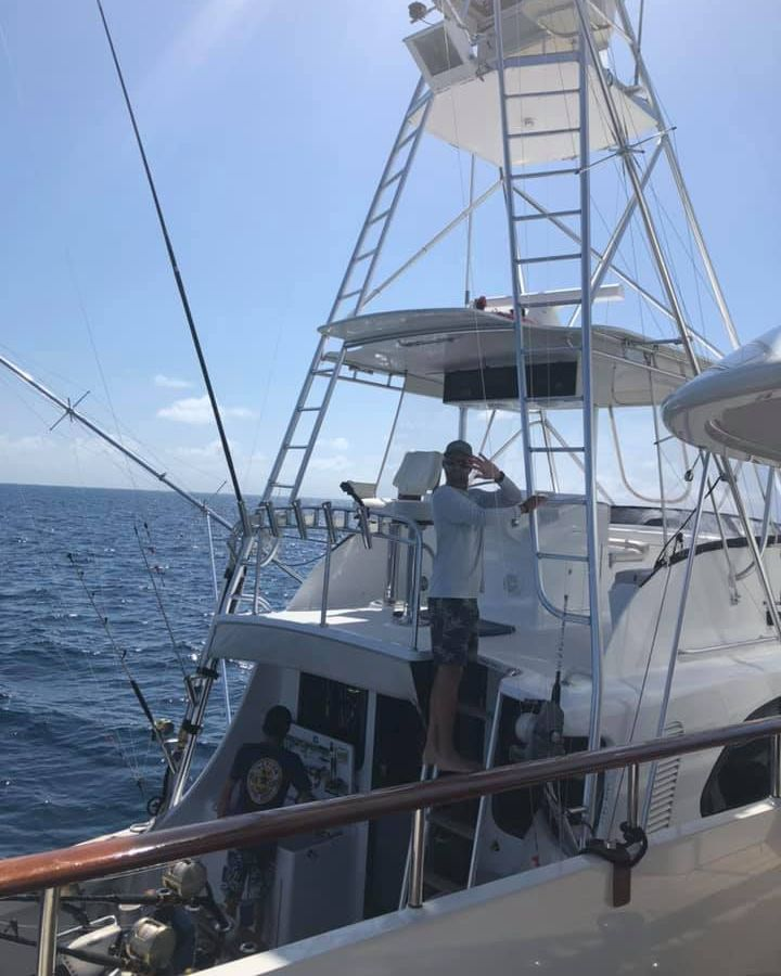 Cooktown, Aus - Capt. Tim Richardson on Tradition released a Black Marlin.