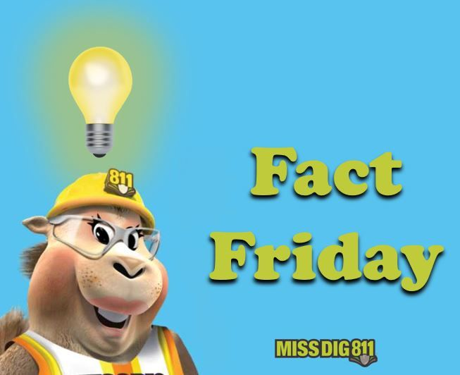 Fact Friday: Neither MISS DIG 811 nor utility companies know the depth of lines. Depth changes are…