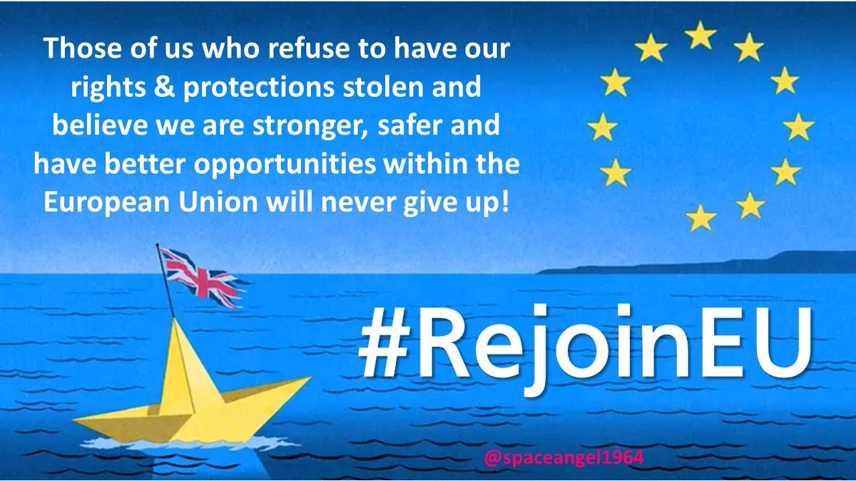 I am usually an optimist and don't tend to plan ahead, but with the #BrexitCrisis, I am feeling horribly pessimistic and want to be prepared for all eventualities, so here's my first #RejoinEU meme.RT if you'll fight to rejoin the EU.@guyverhofstadt @eucopresident