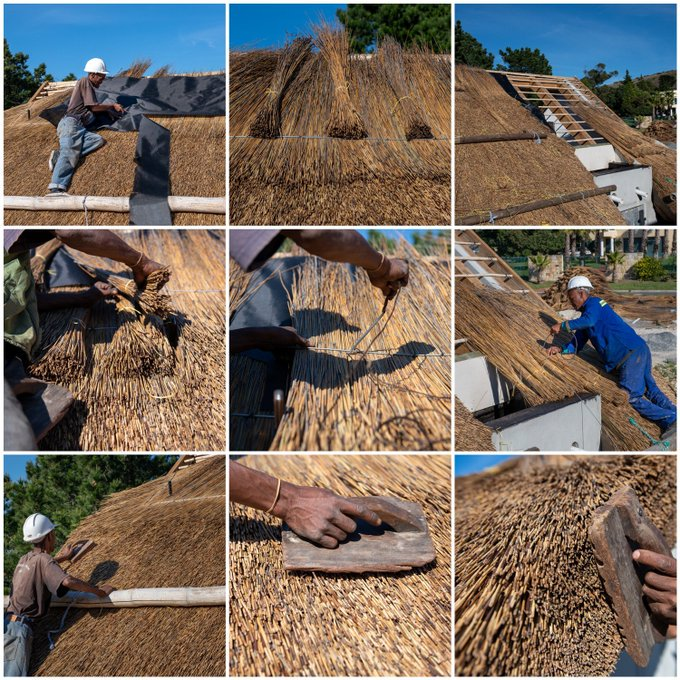 Some beautiful shots of the thatching craft. Masters at work! #monday #masters #thatch #craftsmen #art #ageold #traditional #natural #capereedtribute
