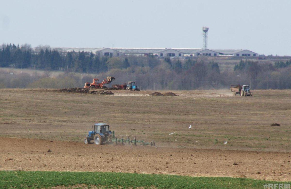 Лукашенко выделяет аграриям 46,3 млн рублей http://dlvr.it/RGW4GR #belarus