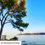 Image for the Tweet beginning: Bon dia #Llançà ! ❤⠀ ⠀ #empordà#capdecreus#costabrava#girona#catalunya#turisme#paradis#travel#sunrise#paradise#spain#igersgirona#descobreixcatalunya#sky#bondia#vacances#holidays#escapat#getaway#traveladdict