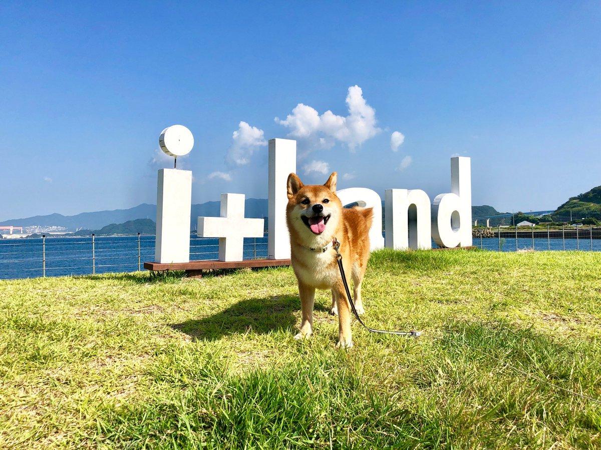 pic.twitter.com/IUFLdktGBx ドッグランは日帰りでもOK! みんなで海を見ながらランしよう!! #ドッグラン #ワンコとお出かけ