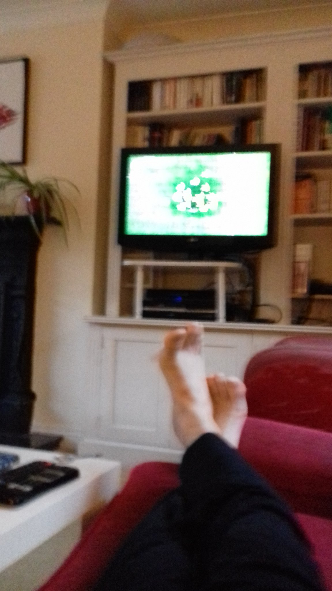 Dr Emmanuel G Reynaud On Twitter Ready Booked The Sofa My Kids Hate Me Rwc19 First Quarter Final Ausvseng But No Brexit I Hope My dog has similar allergies, although not as bad. twitter