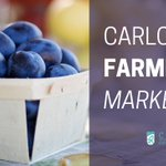 Image for the Tweet beginning: #Carlow Farmers Market is on
