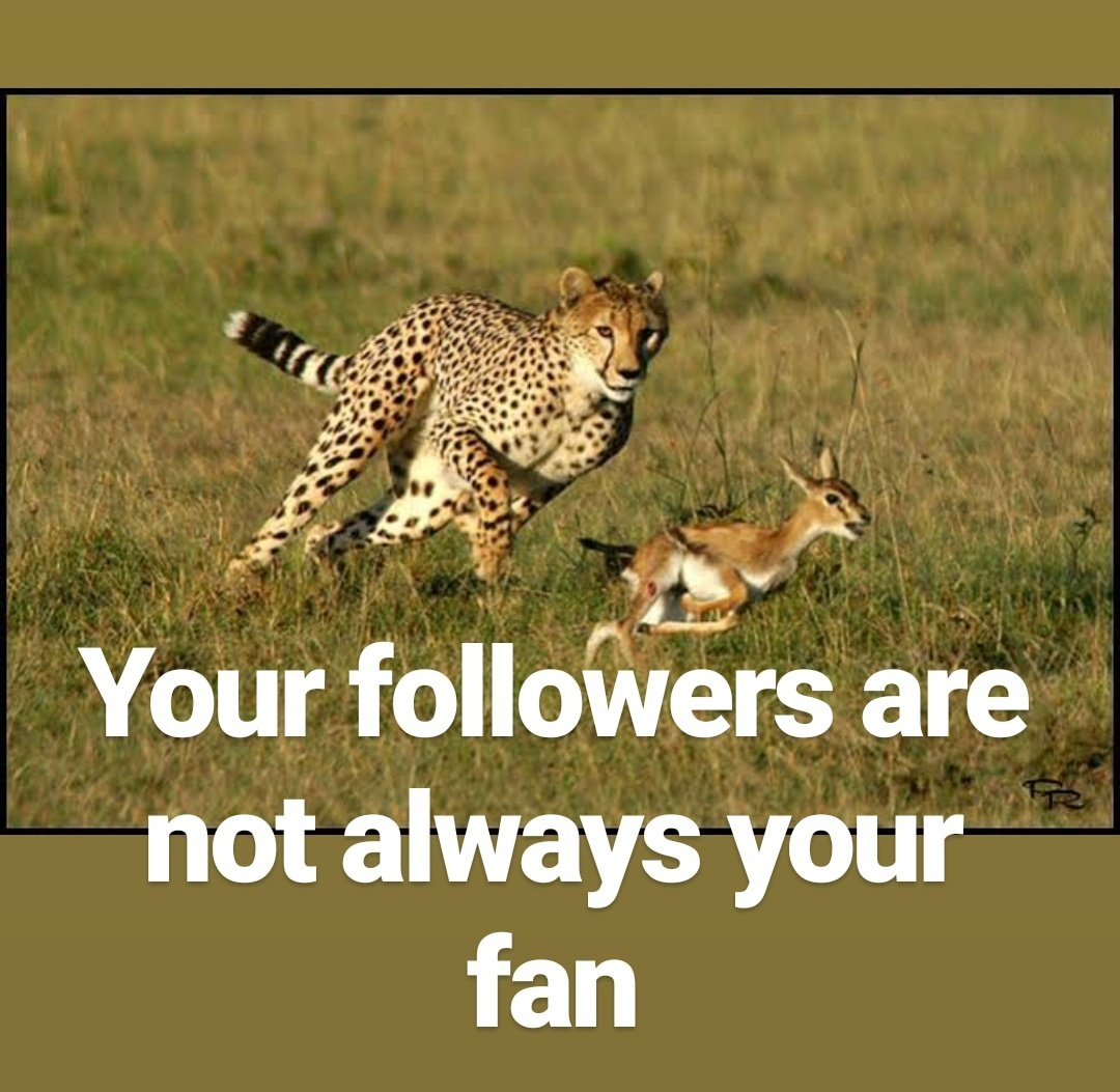 For #weekendvibes   Your followers are not always your fan.  Happy #weekend ahead