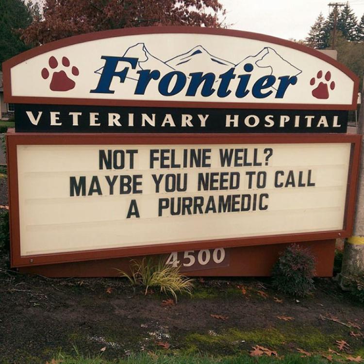 Pinky Presents: Signs on Vet Clinics <br>http://pic.twitter.com/nWaeYTyu1U