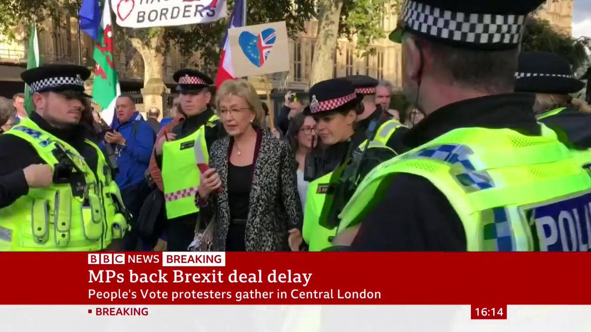 Andrea Leadsom has been escorted by police from the Houses of Parliament due to the presence of protestersMichael Gove and Jacob Rees-Mogg also had a police escort to leave the siteLive updates: http://bbc.in/2MvI6ER #BrexitVote