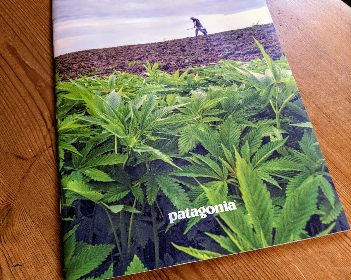 From High Times to the cover of my Patagonia catalogue. What a long strange trip it's been. #hemp
