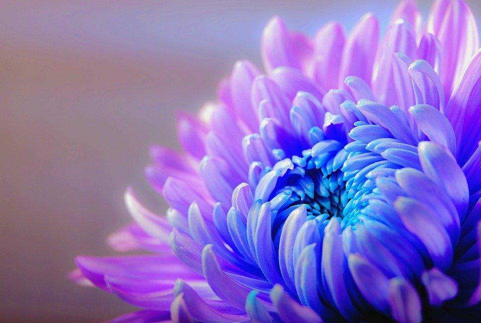 Schließe Frieden mit deiner Vergangenheit, damit du deine Zukunft neu gestalten kannst. ~Andrea Kasper~ Meine Textsammlung findest du unter http://www.sosein.me/für-dich-1/ #Wertschätzung #mindset #Selbstliebe #Friede #Zukunft #Selbstachtung #LeichtigkeitdesSeins #Inspiration #Motivationpic.twitter.com/tpZw4ojc3h