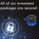 Image for the Tweet beginning: 🔥Did you know?🔥 Each investment package