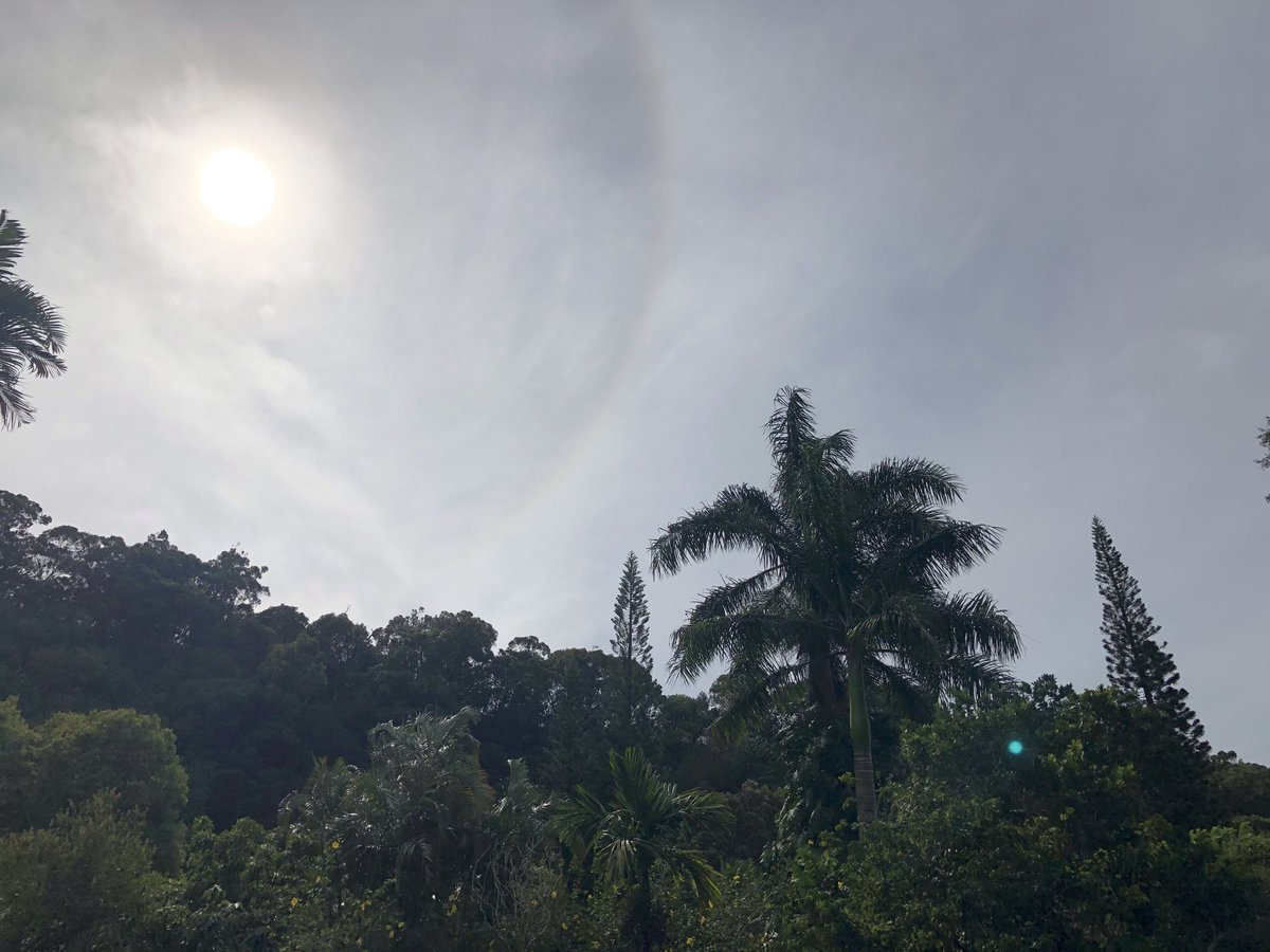 test Twitter Media - Overcast and warm in Makawao. #cmweather #Maui #sacredgarden #Mauinokaoi https://t.co/VjMYsnE0eX