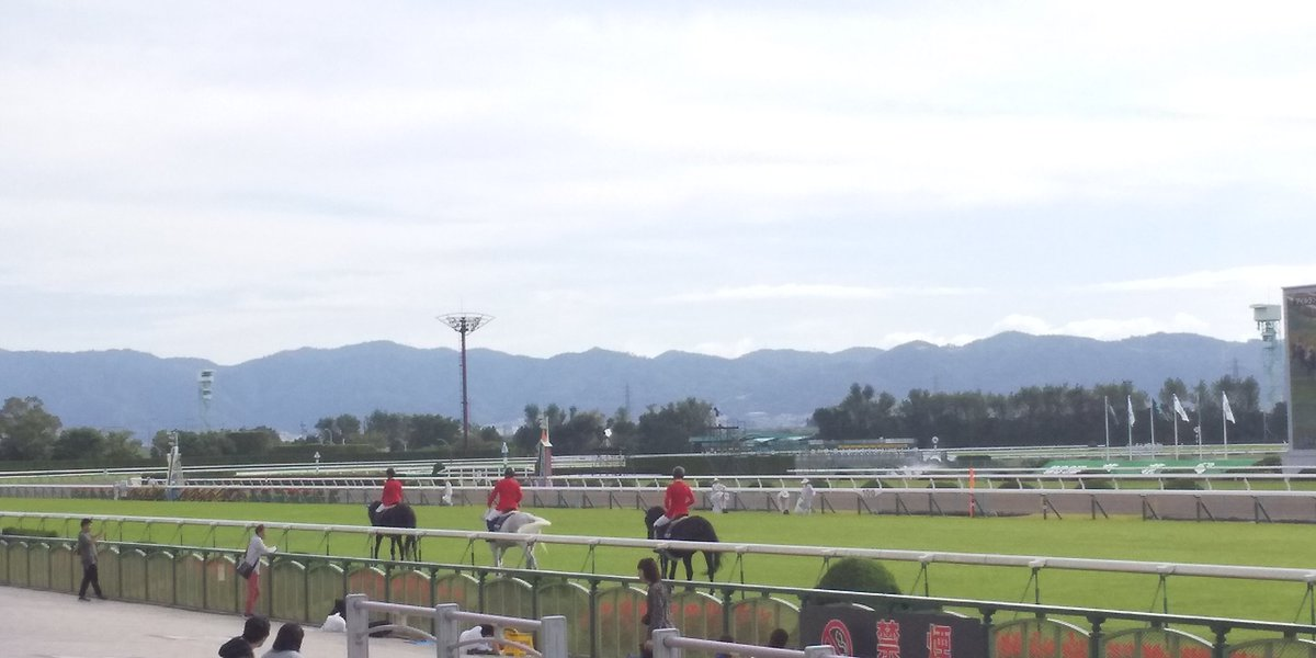 京都 競馬 場 天気