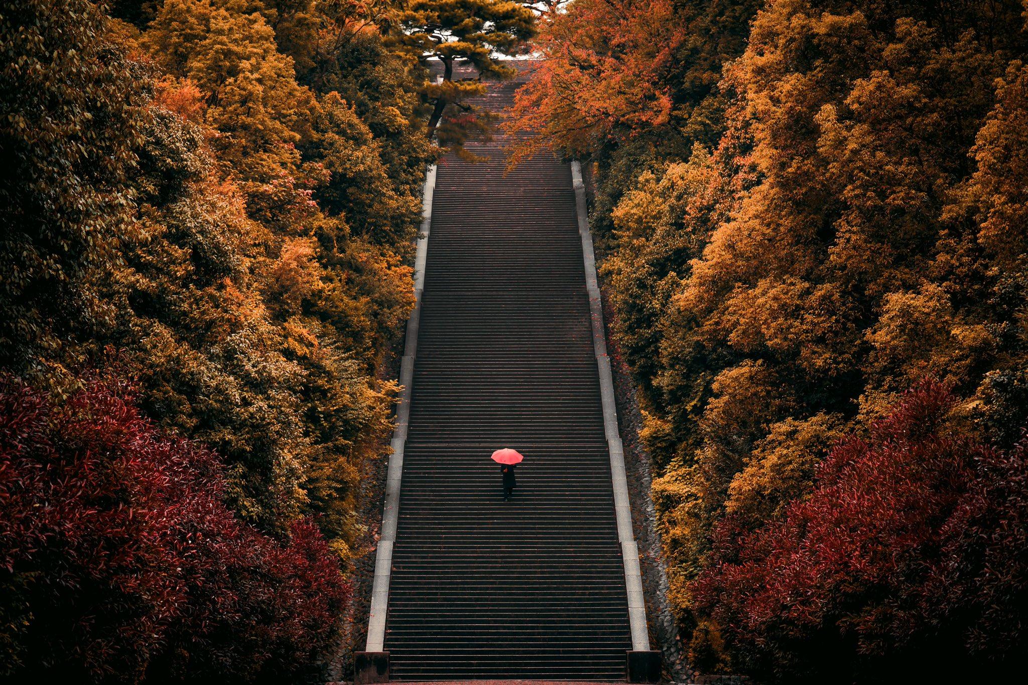 【京都伏見桃山御陵の階段】京都駅ビル大階段より圧巻な大階段・圧巻される!!!!!