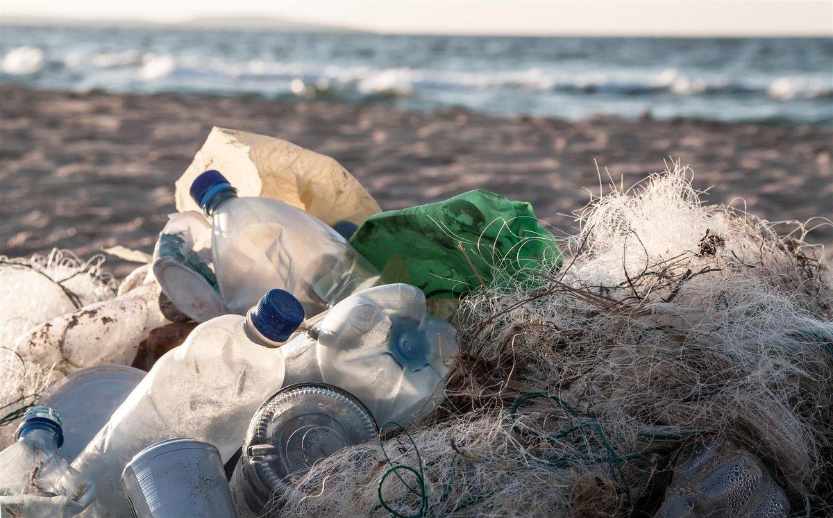 Экология моря картинки