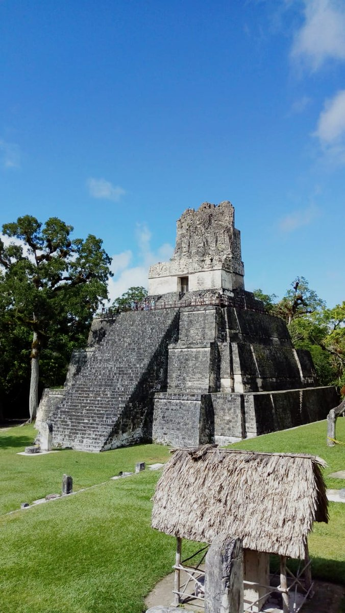 Your next #vacations are ideal to learn more about the #Maya civilization, come and explore #Guatemala with us. #tikal #Travel #travelblogger #traveling @visitcentroamer @VisitGuatemala @arivaltravel @TripAdvisor