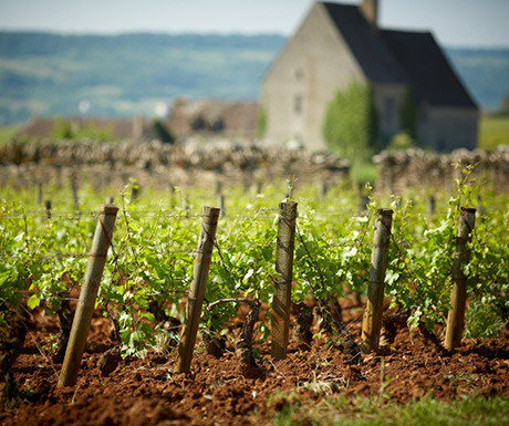 Top 10 walking hotspots in France - A Luxury Travel Blog  : A Luxury Travel Blog