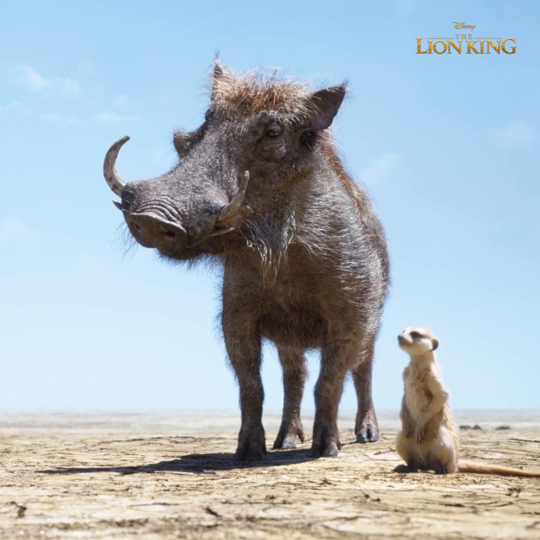 What do you want to do? #TheLionKing