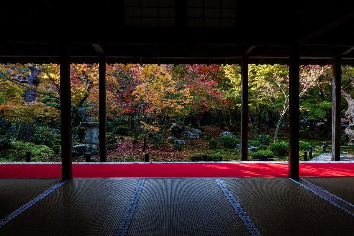 圓光寺早朝拝観「京都の紅葉 詩仙堂・金福寺・圓光寺」昨年のまとめです。紅葉の名所が集まる一乗寺、圓光寺の早朝拝観から一乗寺~修学院界隈、二ノ瀬、貴船・鞍馬と巡る旅もおすすめです。
